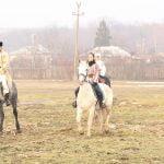 epona horse land bobicesti 2