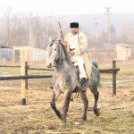 epona horse land bobicesti 3