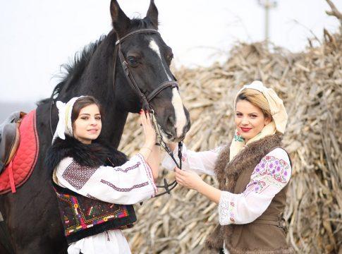 epona horse land bobicesti