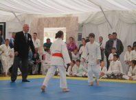judo alro aluminiu slatina
