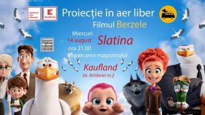 Film în aer liber: Berzele @ Kaufland Steaua